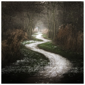 path[1]