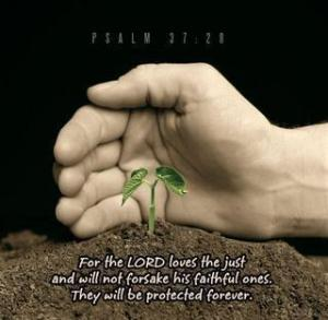 psalm-37-28-lord-loves[1]