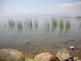 sea-of-galilee-2[1]