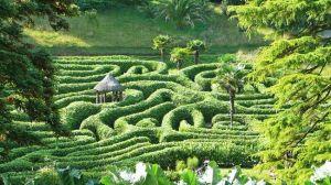 Cornwall, England: Glendurgan Gardens