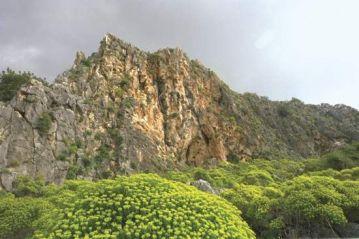 Mount Carmel Today