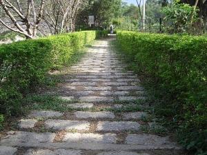 pathways[1]