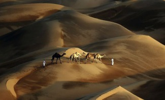 The Liwa Desert