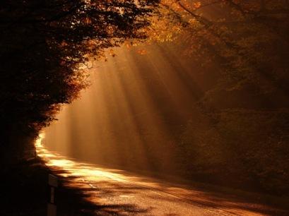 pathway in sun