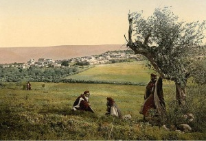 Cana-Wedding-Village-ancient-Holy-Land-picture