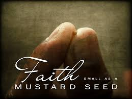 faith as mustard seed