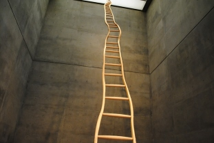 ladder_for_bookertwashington