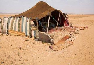Bedouin Tent in the Sahara