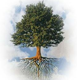 tree_vision1