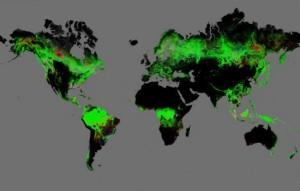 Google-Earth-Deforestation-lead-537x342