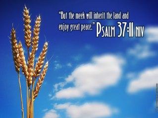 Psalm-37-11
