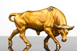 Golden bull sclupture on grey glass