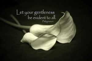 c6a21-gentleness