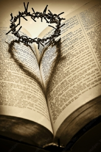 thorn heart bible