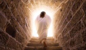 jesus is risen