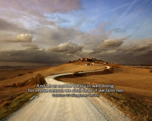 galatians_6.9_kjv_wallpaper.