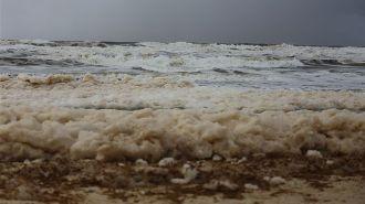 restless seas