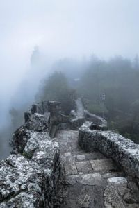 path-into-fog