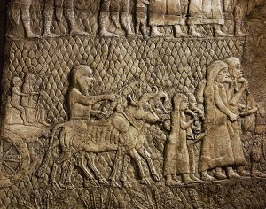 Jewish captives with camel and baggage on their way into exile. Detail of the Assyrian conquest of the Jewish fortified town of Lachish (battle 701 BCE) Part of a relief from the palace of Sennacherib at Niniveh, Mesopotamia (Iraq)