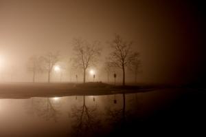 Dave Erickson: Fog Dome