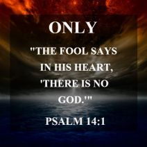 fool-quote