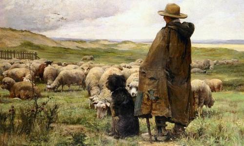 shepherd-e1459398383727.jpg